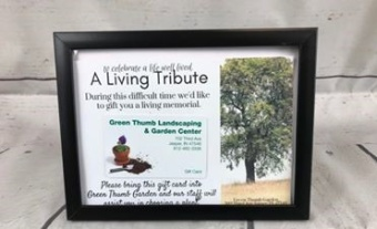 Gift Card in frame