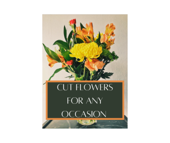 Cut Flowers for any occasion